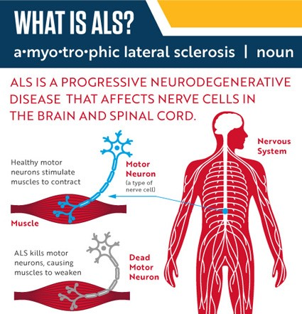 WHat IS ALS Info